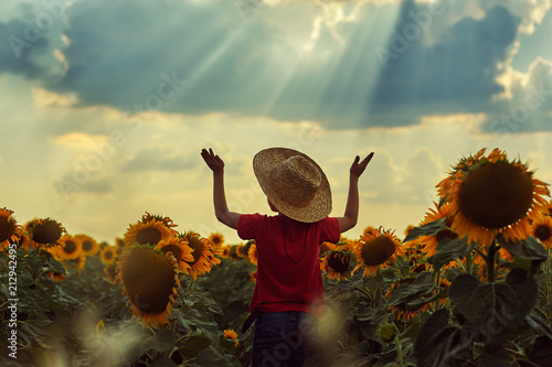 Foto Murales Boy on a walk in the field with sunflowers at sunset