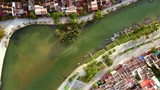 large plants grow in river water boats moored at waterfront - 212953654