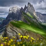 Dolomites meadow Seceda