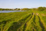 Farm road in Galway bay - 212969467