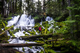 Falls in Oregon