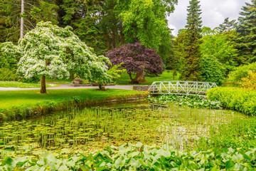 Trees, walk way and lake in Botanic Garden © lisandrotrarbach