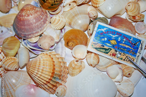 Fotobehang Noordzee Schützt die Nordsee