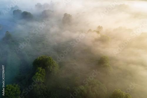 Fotobehang Beige Fog over meadow