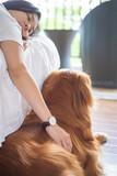 Petting the Golden Retriever - 212987498