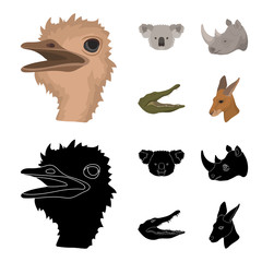 Ostrich, koala, rhinoceros, crocodile, realistic animals set collection icons in cartoon,black style vector symbol stock illustration web. © pandavector