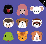 Flat Animal Faces Icon Cartoon Vector Set 7 (Pet)