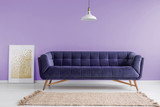 Purple, velvet sofa and a beige rug in a pastel lavender living room interior with a poster mock-up. Real photo. - 213013010