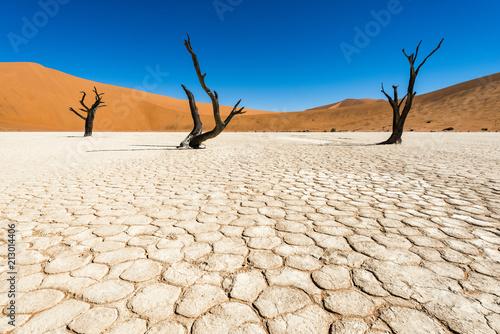 Foto Murales Deadvlei, Namibia