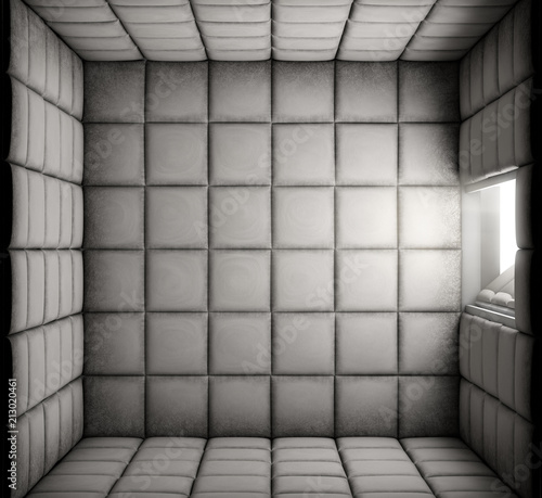 Empty Padded Cell With Open Door
