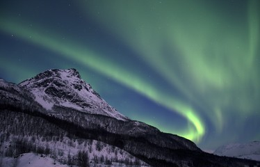The northern lights (Aurora Borealis) over Laksvatn, Troms by a frozen fjord