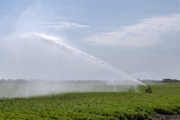 Spraying water on the fields behind the dunes of Julianadorp. Agriculture. Irrigation.  © A