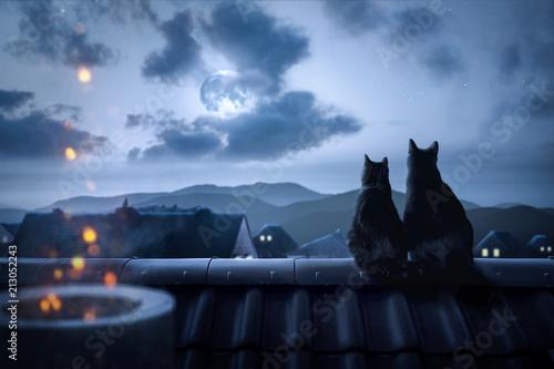 canvas print picture Katzen sitzen auf einem Dach in der Nacht
