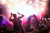 Portrait of happy crowd enjoying at music festival - 213068045