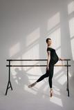 Young beautiful pregnant ballerina is posing in studio - 213071860