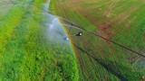 Industrial, agricultural field sprinkler irrigation system, aerial view. If you look closely, you might see some rainbows! - 213086690
