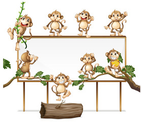 A Blank Sign Board with Playful Monkey © GraphicsRF