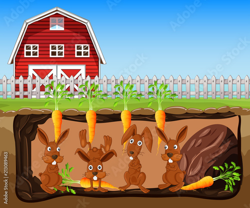 Rabbit Living Underground Farm - 213089463