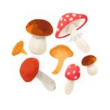 Watercolor mushroom vector composition - 213094860