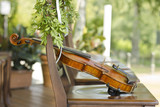 Violin. Violin outdoors. Live music. Wedding.Musician for the wedding.Violin under the open sky - 213102897
