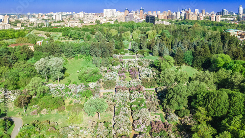 Fotobehang Kiev Aerial top view of Kiev city and botanical garden park from above, blossoming lilac and Kyiv cityscape, Ukraine