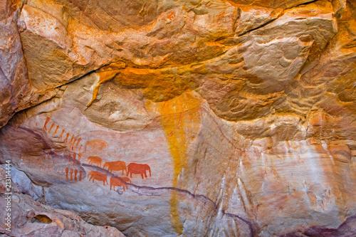 Fototapeta Rock art of people and elephant South Africa