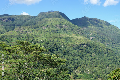 Fotobehang Olijf Mountain landscape in a green valley with the villages. View of Kotmale Reservoir, Sri Lanka.