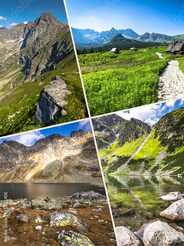 Collage of Zakopane mountains national park in Polonia