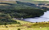Hügellanschaft von Wales im Spätsommer - 213141890