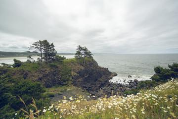 Oregon coast. Ocean, cliffs and flowers on foreground. © Vladimir Chopine