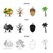 Burning tree, palm, acorn, dry tree.Forest set collection icons in cartoon,black,outline style vector symbol stock illustration web.