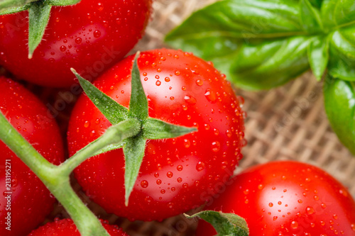 Cherry tomatoes on a branch with drops of water, macro, close up, delicious fresh harvest. Organic food
