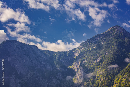 high mountains in summer time covered with forest ,Austria alps