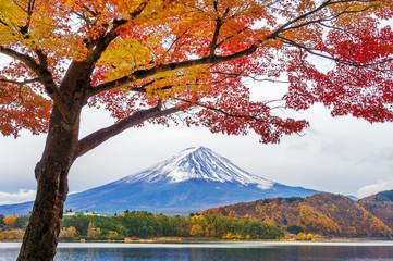 Autumn Season and Fuji mountains at Kawaguchiko lake, Japan. © tawatchai1990