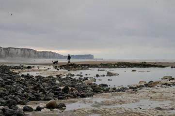 Normandie, l'estran