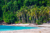 Tropical beach with palm trees - 213219068