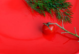 Dill and cherry tomatoes on a branch on a red background. - 213227684