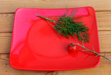Dill and cherry tomatoes on a branch on a red plate. - 213227687