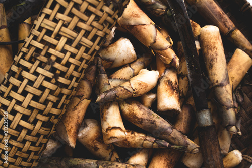 raw bamboo shoot in threshing basket