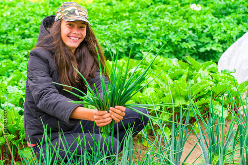 Girl working in the garden, in the hands of a bunch of onions, harvesting concept, smiling. - 213235437