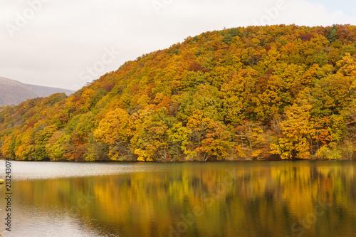 宮城県 長老湖の紅葉 autumn leaves in chourouko lake