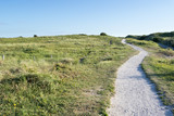 Berkheide dunes south of Katwijk aan Zee/ Netherlands - 213283402