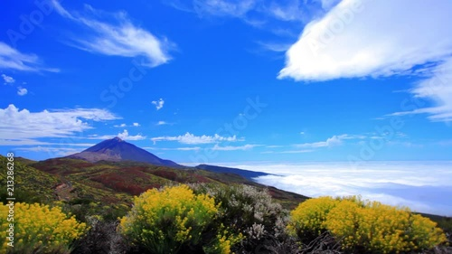 Wall mural Tenerife. Canary Islands. Spring on the volcano Tade. Mount Tade. The blue sky and fluffy swirling clouds covering the boundless ocean. Yellow flowering bushes of plants. Panorama. Time laps