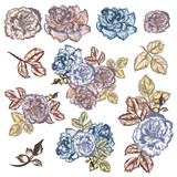 Collection of vector watercolor hand drawn vintage roses - 213289637