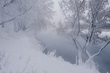 Winter landscape with river and frozen trees - 213291419