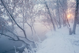 Winter landscape with river and frozen trees - 213291439