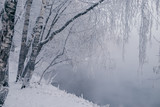 Winter landscape with river and frozen trees - 213291448