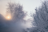 Winter landscape with iced trees. - 213291472
