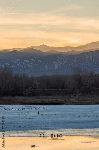 Fotobehang Beige Birds and mountains