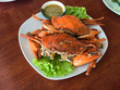 Stream egg crab with spicy sauce on dish - 213326234